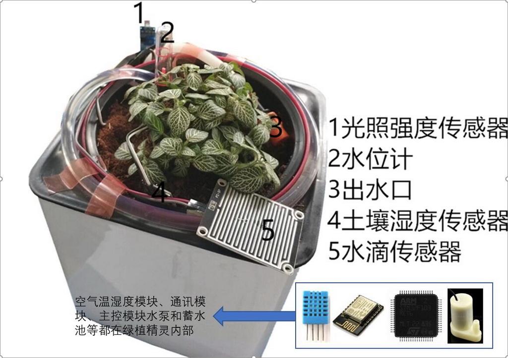 智能产品设计竞赛作品——智能家庭绿植管家